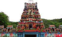 Palamudircholai Murugan Temple